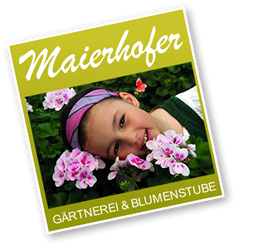 Blumenstube & Gärtnerei Maierhofer